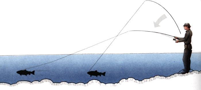Подсечка рыбы спиннингом
